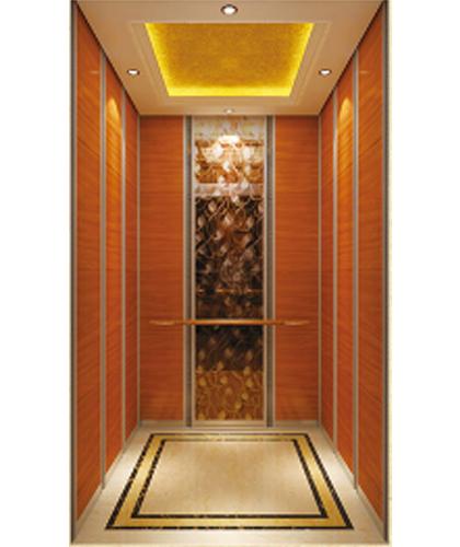 歌拉瑞别墅电梯-菡萏成花HC124